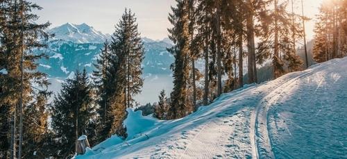 Œil bionique et station de ski pas chère : voici le journal des...